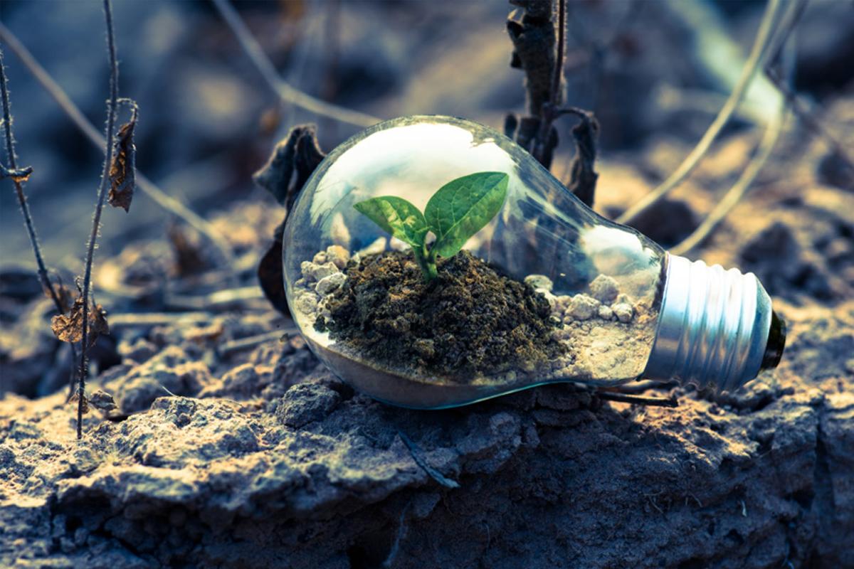 environment-innovation